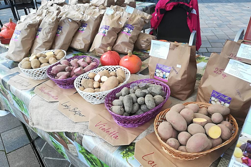 Unsere Angebote: Bunte Kartoffel auf einem Markt