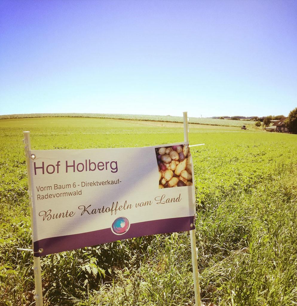 Banner von Hof Holberg auf einem Feld