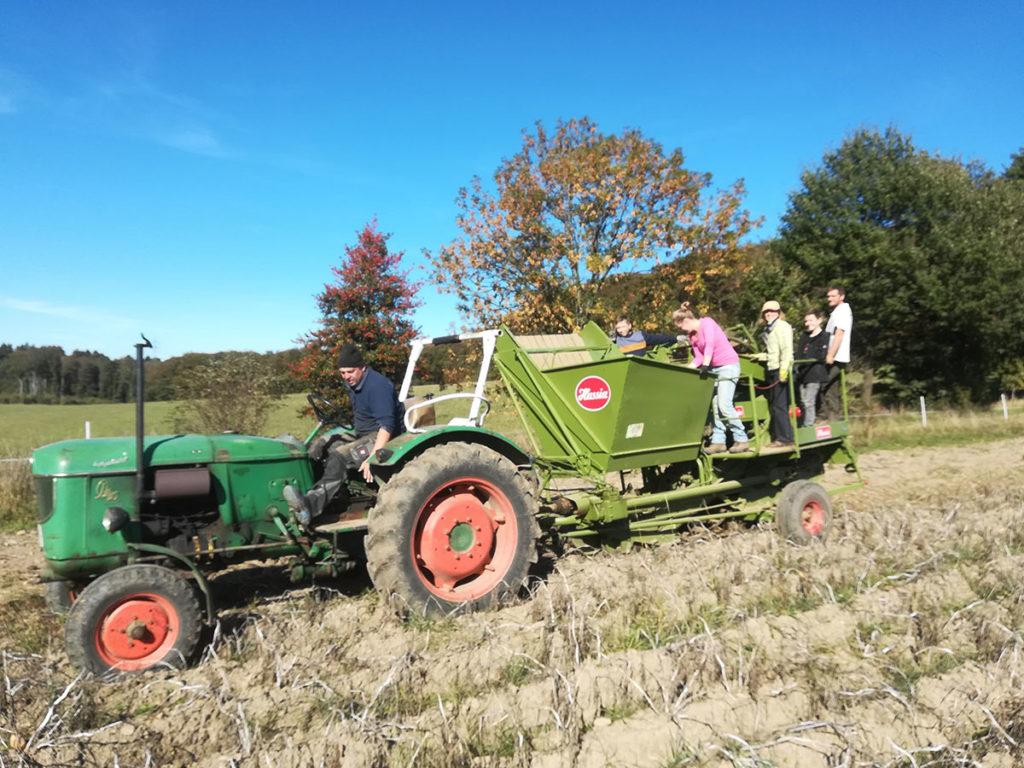 Freiwillige bei der Ernte